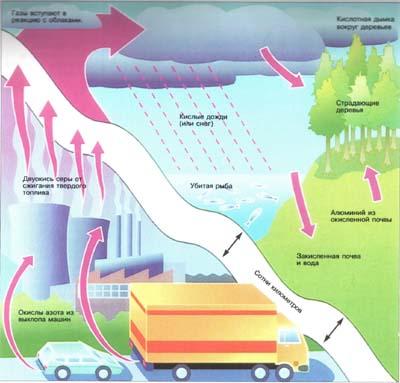 выпадение кислотных дождей